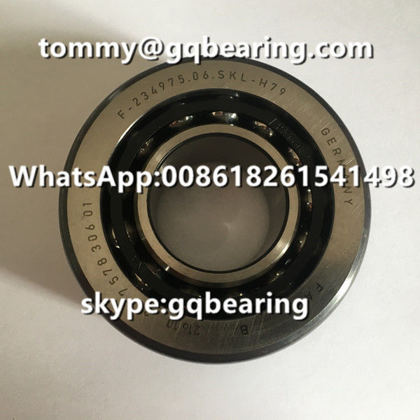 Chrome Steel Material FAG F-234975.06 F-234975.06.SKL-H79 BMW Differential Automotive Bearing